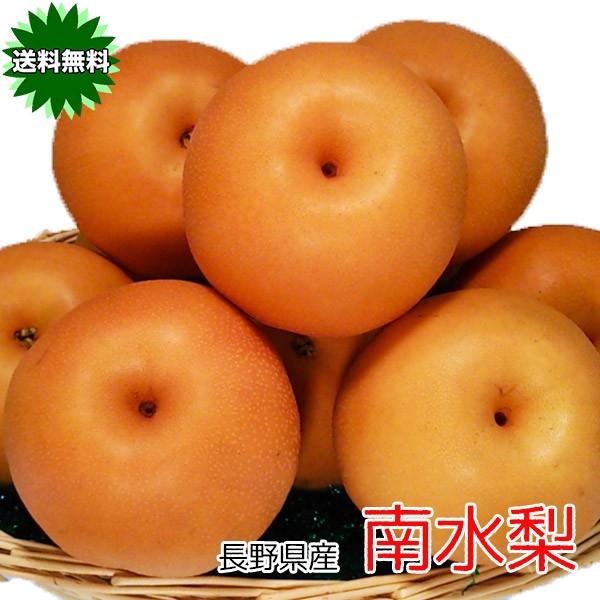 予約販売 梨 なし 訳あり 送料無料 信州 長野県産 南水 梨 秀品 大玉 5kg 6〜16個 送料無料 ギフト
