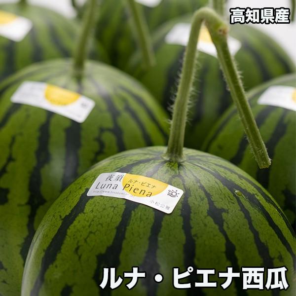高知県産ルナピエナ西瓜 約1.2kg以上(夜空) ※北海道・沖縄県は送料必要