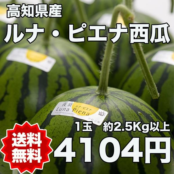 高知県産ルナピエナ西瓜 約2.5kg以上(夜空) ※北海道・沖縄県は送料必要