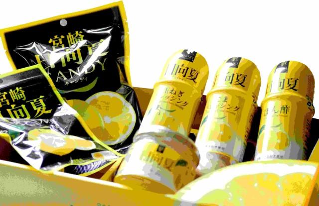 ☆お歳暮に☆【日向夏セット】宮崎の特産品『日向夏みかん』を使用した、ぽん酢しょうゆ・玉ねぎドレッシング・ごまドレッシング・ジャム
