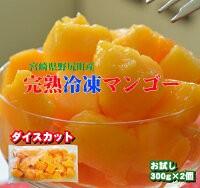 【冷凍マンゴー】宮崎完熟マンゴーを冷凍にしました。甘〜い一口サイズのダイスカットたっぷり1.5KG!(300G×5パック)生よりお得★