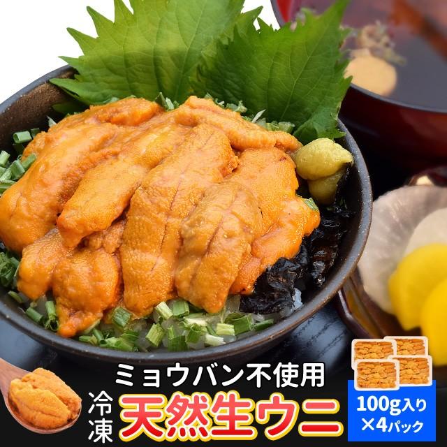 うに 100g×4 天然冷凍生ウニ 刺身雲丹 ミョウバン不使用 無添加 最高級グレードの雲丹 海鮮丼