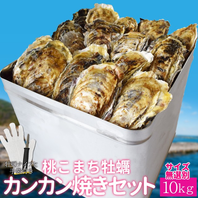 牡蠣 カンカン焼き セット 桃こまち サイズ 無選別 10kg(約120個前後入) 一斗缶入り 加熱用 (牡蛎ナイフ・片手用軍手付き) 殻