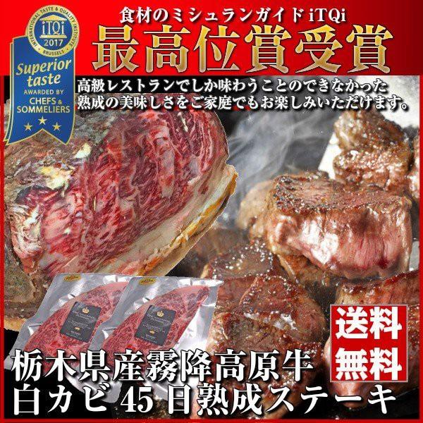熟成肉 ステーキ 牛肉 ブロック 赤み 霜降り お取り寄せグルメ 送料無料 肉 ギフト 父の日 お中元 詰め合わせ Gift とちぎ霧降高原牛 230