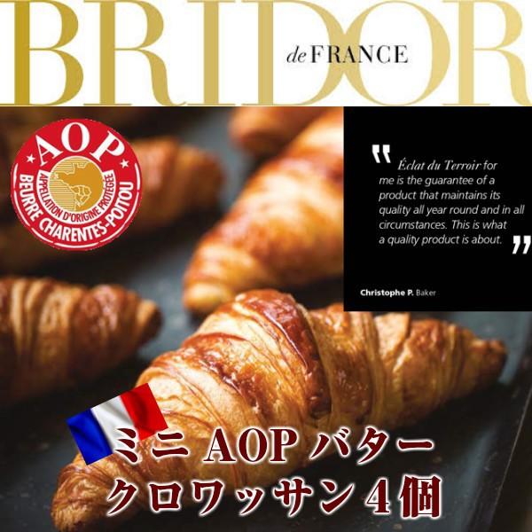 フランス ブリドール社製AOPバターミニクロワッサン