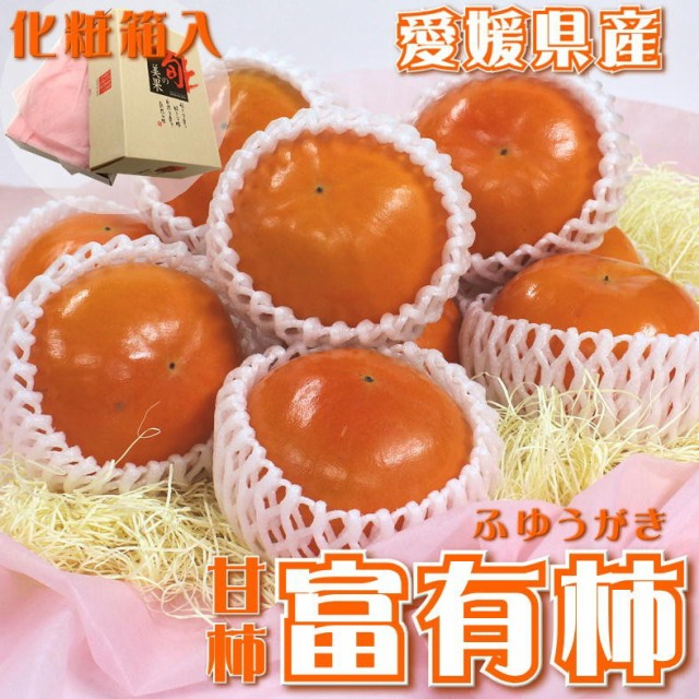 化粧箱 愛媛県産 富有柿 約2.5kg/甘柿 ギフト