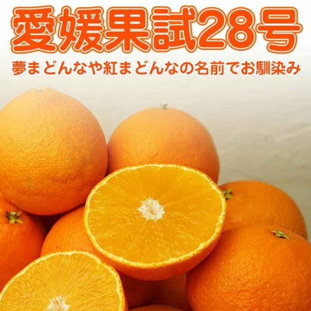 (アイカ) 愛媛果試28号 約3kg