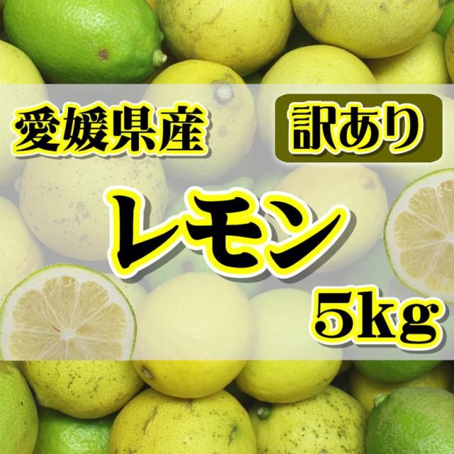 【訳あり】国産 レモン 約5kg 愛媛県産(れもん)【ワックス・防腐剤不使用】