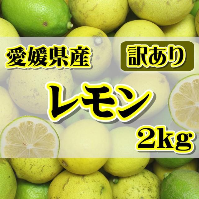 訳あり 国産 レモン約2kg 愛媛県産 ワックス・防腐剤不使用 れもん