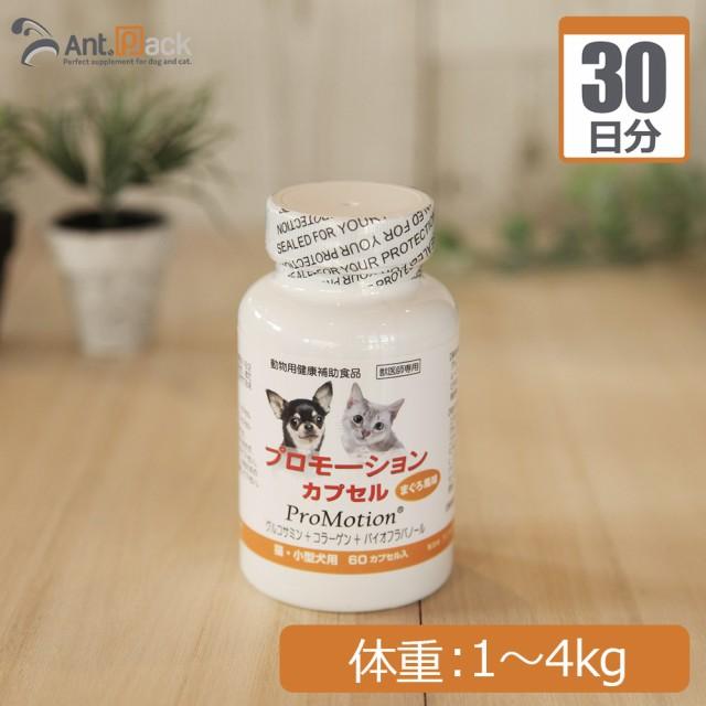 共立製薬 プロモーションカプセル 犬猫用 体重1kg〜4kg 1日1カプセル30日分