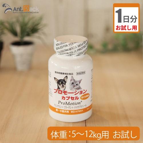 【お試し1日分】共立製薬 プロモーションカプセル 犬猫用 体重5kg〜12kg用 2カプセル