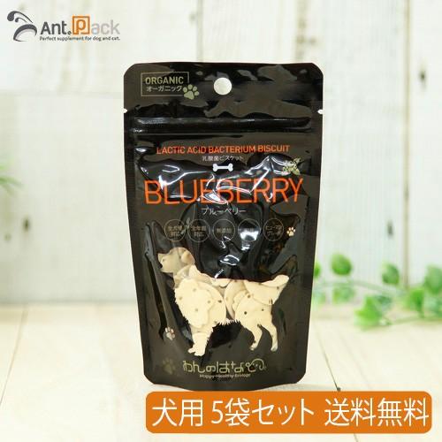 【お試し特価】 わんのはな 乳酸菌ビスケット ブルーベリー 犬用 35g×5袋 【送料無料】(賞味期限:2020年11月30日) ※お1人様1セット限り