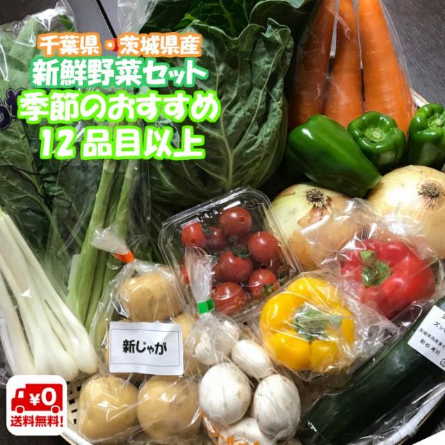野菜セット 12品目以上 千葉県産 ・ 茨城県産 旬 詰め合わせ 産直野菜 新鮮 採れたて クール便代込 送料無料 (一部地域は別途送料がかか