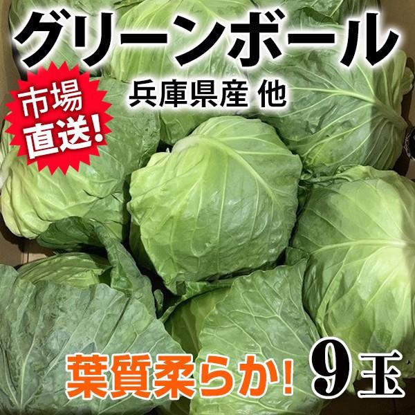 グリーンボール 9玉 長野県産 【葉質柔らか!】