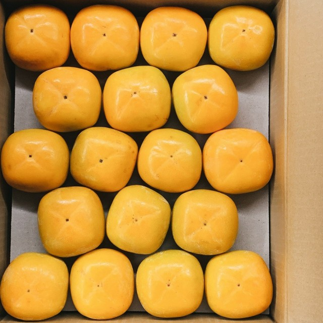 たねなし柿 かき 和歌山県産 36玉 約7.5Kg 2Lサイズ