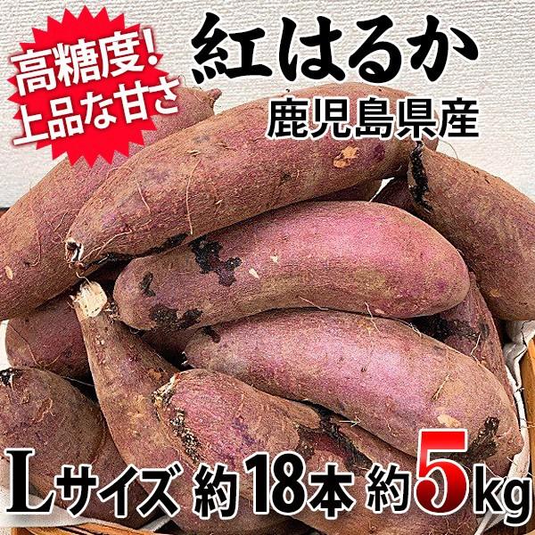 【しっとりして『はるか』に甘い!】紅はるか Lサイズ 約5Kg 約18本 鹿児島県産