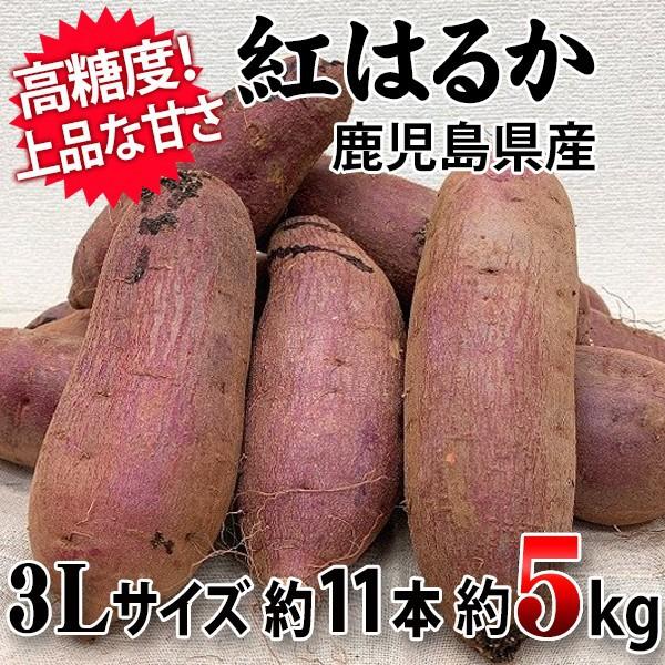 【しっとりしつつ滑らかな口触り!】紅はるか 3Lサイズ 約5Kg 約11本 鹿児島県産
