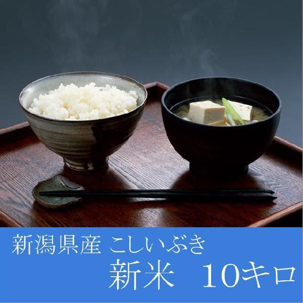 新潟県産 こしいぶき 10kg(5Kg×2)