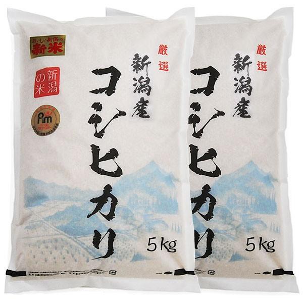 新潟県産コシヒカリ 令和元年産 新潟産コシヒカリ 10kg (5キロ×2袋=10キロ)プレゼント 実用的