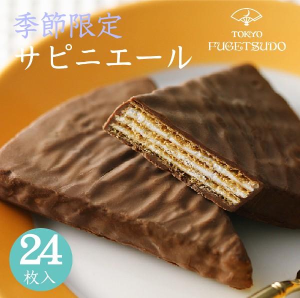 チョコレート プレゼント 詰め合わせ 個包装 スイーツ ギフト 贈り物 お土産 お菓子 東京風月堂 サピニエール24枚入