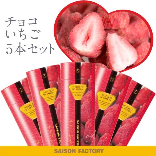 セゾンファクトリー 100g チョコいちご5本セット プチギフト いちご チョコレート お菓子