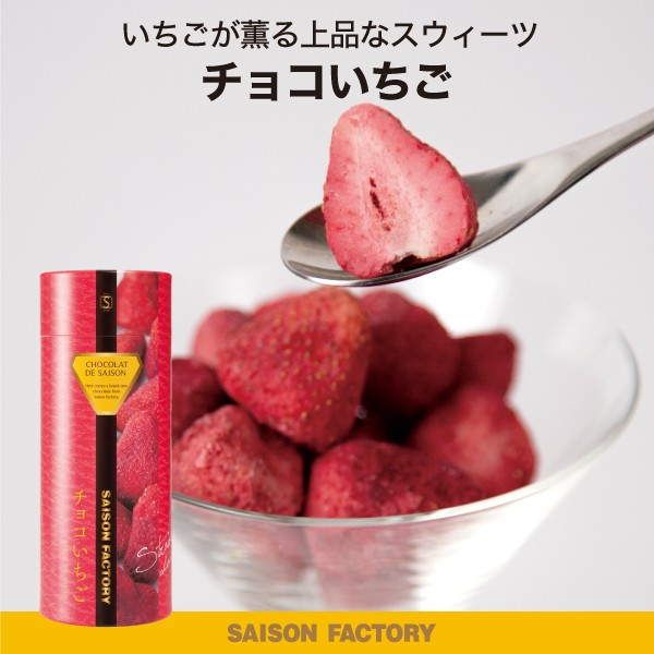 セゾンファクトリー 100g チョコいちご プチギフト いちご チョコレート お菓子