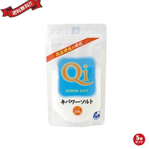 【最大29%還元】【100円クーポン】キパワーソルト 250g 5袋セット