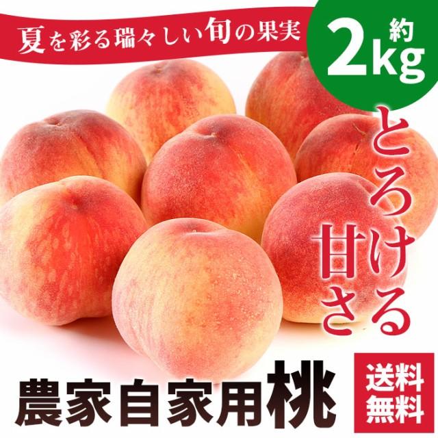 お中元 桃 訳あり 農家自家用 もも 約2kg 送料無料 わけあり 自宅用 フルーツ 果物 ギフト プレゼント 贈答用