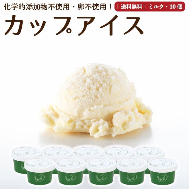 プレゼント ギフト ミルク アイスクリーム 10個 送料無料 無添加 詰め合わせ スイーツ 卵不使用 ギフト お取り寄せ [冷凍]