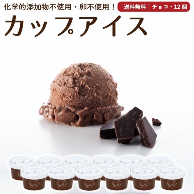 プレゼント ギフト チョコレート アイスクリーム 12個 送料無料 無添加 詰め合わせ スイーツ 卵不使用 ギフト お取り寄せ [冷凍]