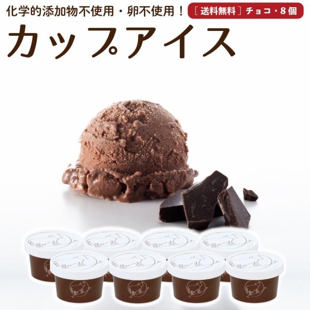 プレゼント ギフト チョコレート アイスクリーム 8個 送料無料 無添加 詰め合わせ スイーツ 卵不使用 ギフト お取り寄せ [冷凍]