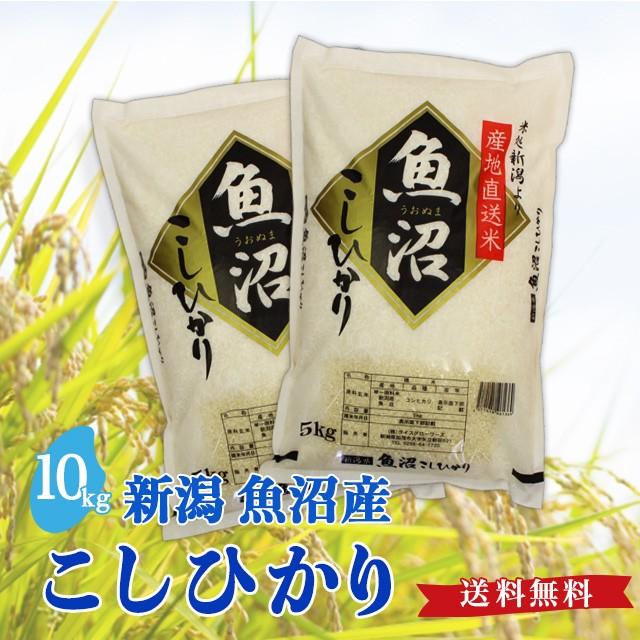 令和2年度産 魚沼産 こしひかり 10kg 送料無料 新潟県 お米 10キロ