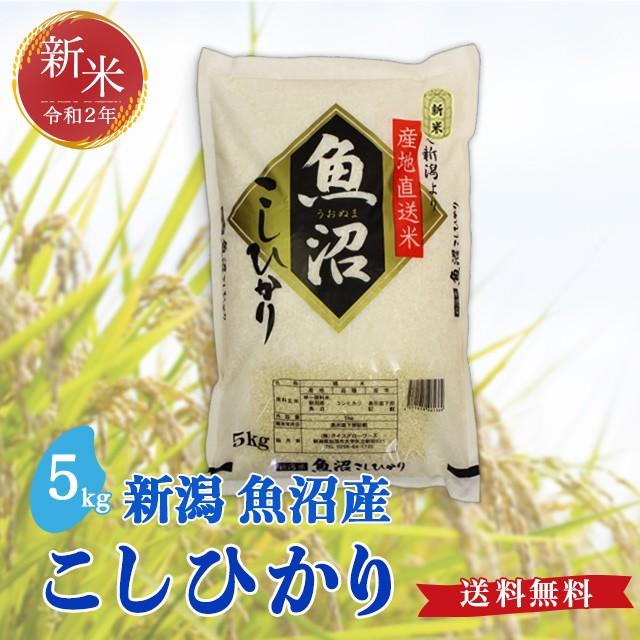 令和2年度産(新米)魚沼産 こしひかり 5kg 送料無料 新潟県 お米 5キロ