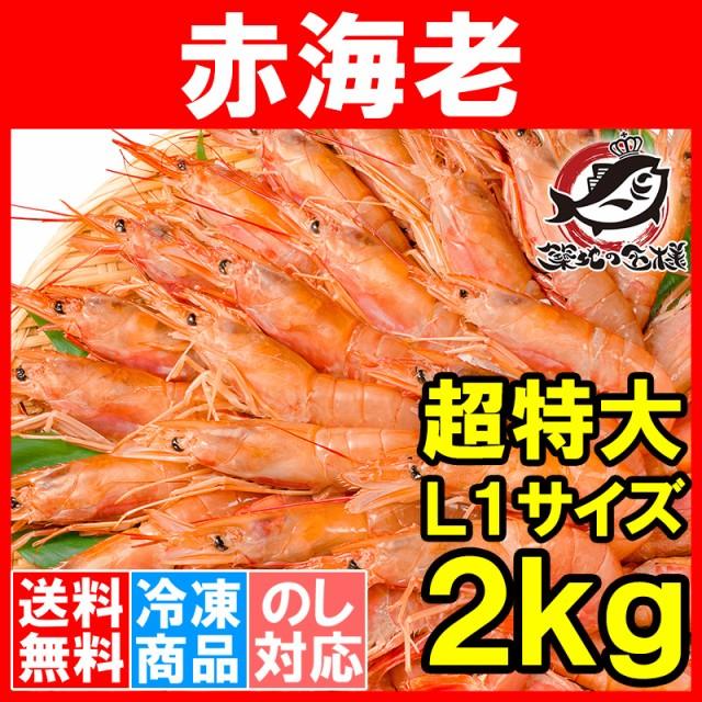 【送料無料】赤海老 赤えび 2kg 超特大 L1 20〜40尾 業務用 1箱 お刺身 ぼたん海老を超える希少な超特大!大きくプリプリの赤海老は甘み