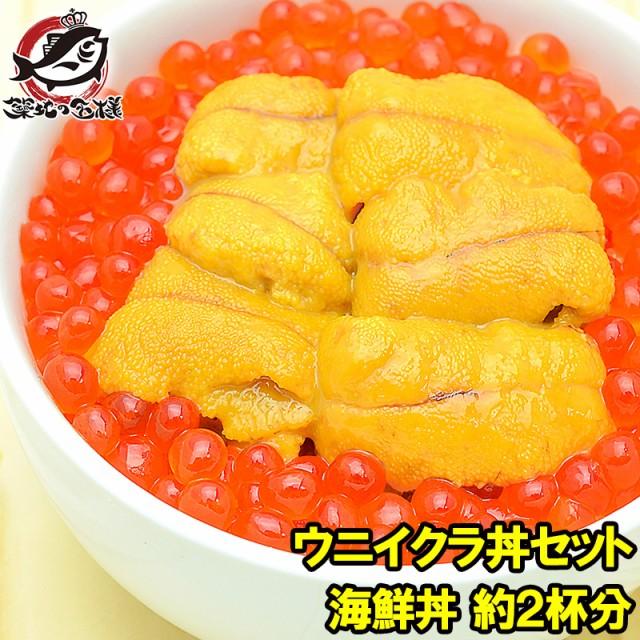 豊洲市場のウニイクラ丼セット 2杯分 無添加生ウニ100g&いくら醤油漬け100g 海鮮丼で約2杯分【うに ウニ いくら イクラ うにいくら丼 海