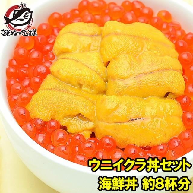 送料無料 豊洲市場のウニイクラ丼セット 8杯分 無添加生ウニ400g&いくら醤油漬け400g 海鮮丼で約8杯分【うに ウニ いくら イクラ うにい