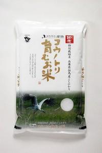 元年新米!「コウノトリ育むお米(玄米)」 (無農薬・特別栽培米) (コシヒカリ)5Kg(送料込)