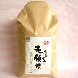 元年新米! 「石見銀山天領米」 氷感熟成特別栽培コシヒカリ (こしひかり)10Kg(送料込)