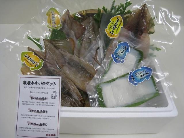 能登半島小木港産の 新鮮な「いか(イカ)3種5Pセット」