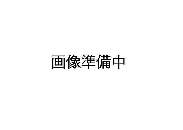HITACHI 日立 掃除機用 吸口 D-AP41-N用(シャンパン色) CV-SA500-013