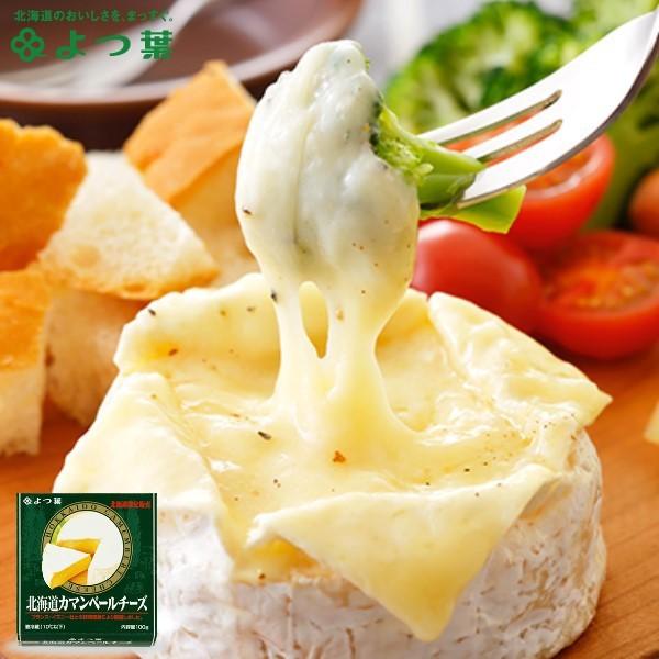 よつ葉 北海道カマンベールチーズ 【100g×1箱】 北海道 お土産
