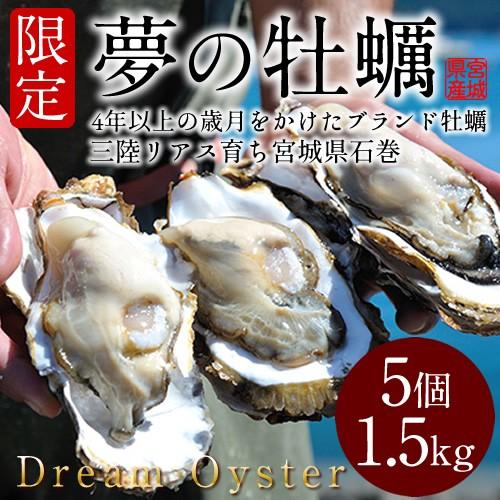 生牡蠣 殻付き 特大 夢牡蠣 5個 生食用 生ガキ 大粒生牡蠣 特大 バーベキュー