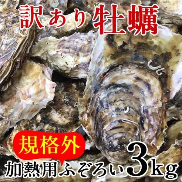 牡蠣 訳あり [規格外] 3kg 加熱用 殻付き牡蛎 漁師直送 カキ 生かき 三陸 宮城県産