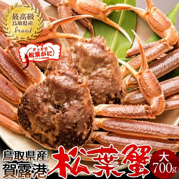 かに 松葉ガニ[大]700g×2尾 松葉蟹 活がに 鳥取県産 ブランドタグ付きマツバガニ 日本海ズワイガニ