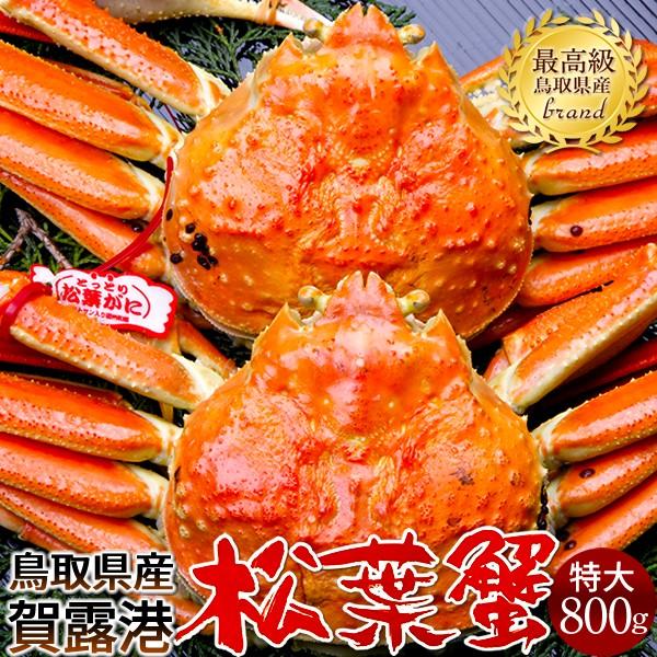 かに 松葉ガニ[特大]800g×2尾 松葉蟹 ボイル ゆでがに 鳥取県産 ブランドタグ付きマツバガニ 日本海ズワイガニ