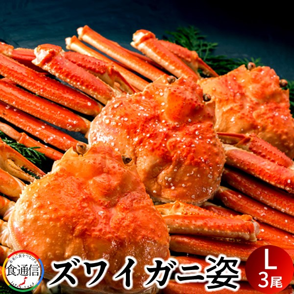 ずわいがに姿 (3尾入)1.5kg ボイル かに ずわい蟹 ズワイガニ 姿