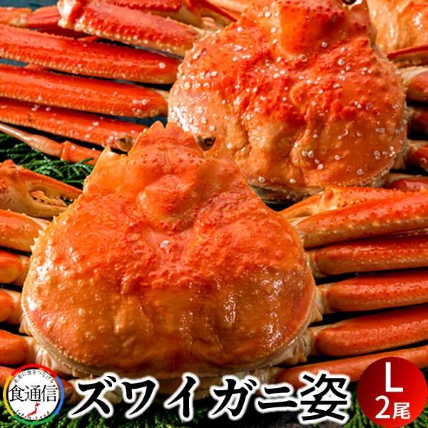 ずわいがに姿 (2尾入)1kg ボイル かに ずわい蟹 ズワイガニ 姿