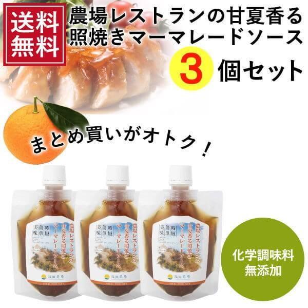 熊本発 簡単料理たれ 甘夏マーマレード照り焼き調味料150g 3袋セット 送料無料