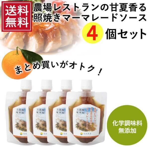 熊本発 簡単料理たれ 甘夏マーマレード照り焼き調味料150g 4袋セット 送料無料