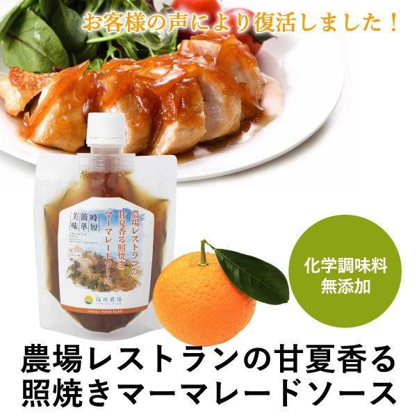 熊本発 簡単 料理たれ 甘夏 マーマレード 照り焼き 調味料 150g袋